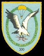 fsk300