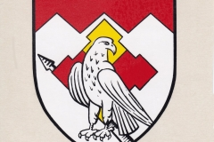 PzSpähZug350